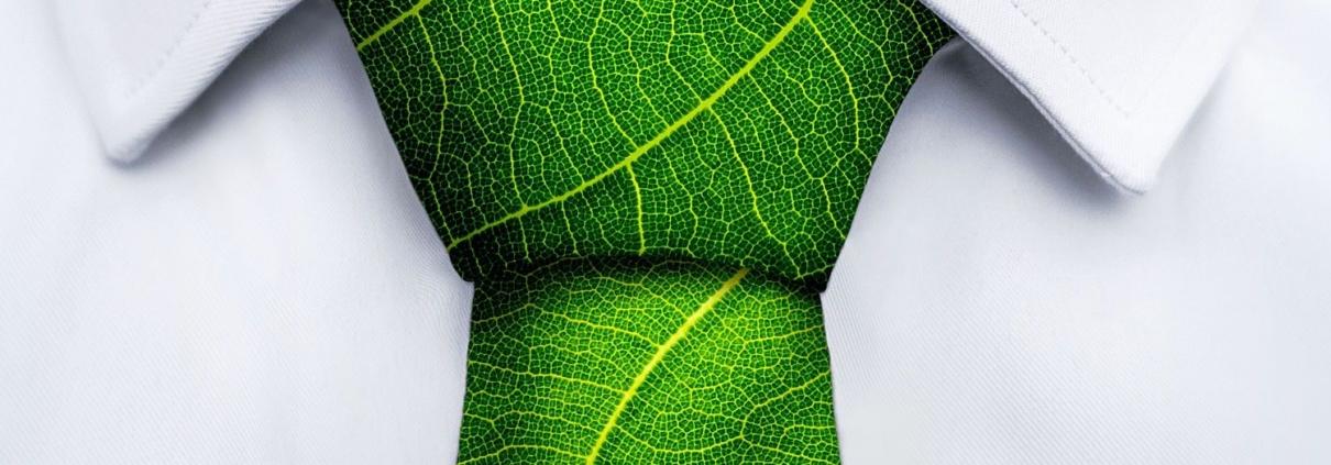 Beitragsbild für Blogbeitrag Green Engineering Energiewende regionale Wertschöpfung: Krawatte aus Blatt gefaltet auf weißem Hemd